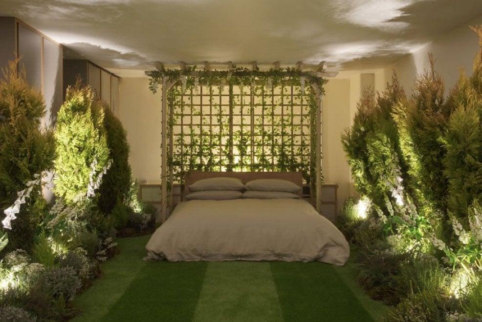 Londra, il soggiorno Airbnb più verde: la casa sembra un bosco ...