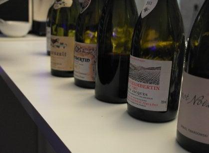 Pinot Noix della Mosella contro Pinot Noir della Borgogna: i magnifici nove