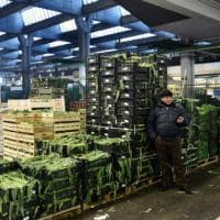 Verdura mai così cara: il gelo dai campi alla tavola