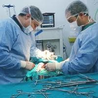 Siria, campo di Bab al Salam: il racconto di un medico in prima linea