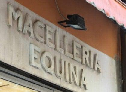 Bologna: la storia di Pierino, ultimo Mohicano delle macellerie equine