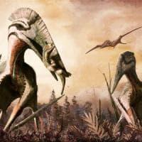 Grande come un T-rex: il rettile alato che mangiava dinosauri