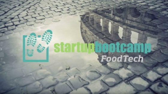 Le start up del food: quando l'innovazione si dedica al cibo