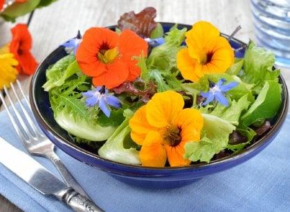 Ditelo con i fiori e poi mangiateli: il business è servito