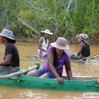 Peru, Madagascar e Burkina Faso: i progetti finanziati da Ecosia