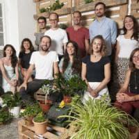 Ecosia, il motore di ricerca che ha piantato 6 milioni di alberi