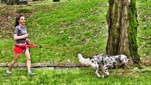 """Quando la corsa è a sei zampe:  """"Col mio cane mi diverto così"""""""