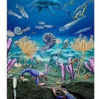 Così la vita è riesplosa subito dopo la più grande estinzione di massa