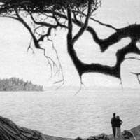L'illusione ottica nella foto in bianco e nero: riuscite a vedere il neonato nascosto?
