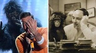 Desmond Morris elogia Gabbani 'Che onore mia scimmia sul palco'