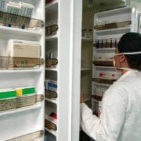 Immuno-oncologia: ok dell'Aifa per nivolumab nel tumore di rene e polmone