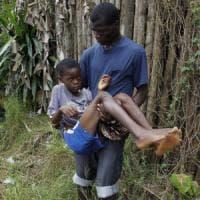 La distruzione dei boschi in Africa ha favorito il rischio Ebola
