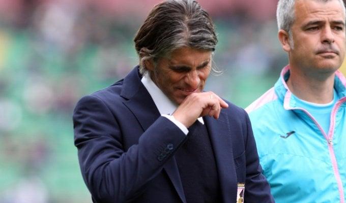 """Palermo, Lopez: """"Vedo il lato positivo, siamo sulla strada giusta"""""""