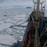 """C'è abbondanza vita di su """"ostile"""" sul fondo marino dell'Antartide"""