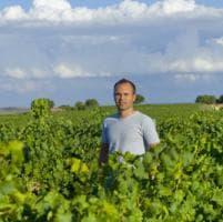 Dal campo alla vigna: quando il vino lo producono i calciatori (e gli allenatori)