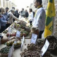 Nei consumi alimentari cresce il bio, calano carne e alcol
