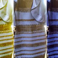 Da The Dress all'Ice Bucket Challenge, i contenuti web più virali di sempre