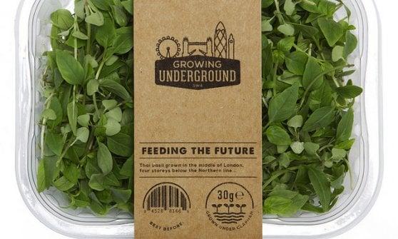 E l'insalata cresce sotto terra: è l'agricoltura del futuro?