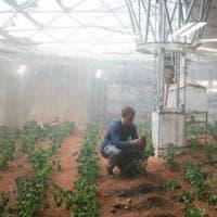 Patate su Marte, una missione possibile