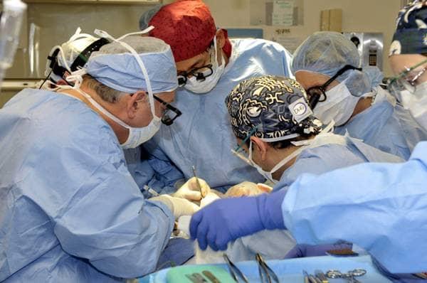 Trapianti, il 50% dei pazienti  a rischio tumori. Il progetto Giotto per trovare soluzioni
