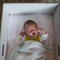 Neonati in scatola: la ricetta finlandese contro le morti in culla conquista l'America