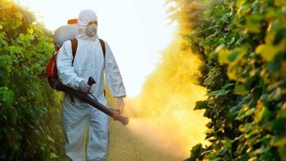 Greenpeace: quasi 500mila europei hanno firmato contro il glifosato