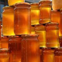 Caccia al miele degli dei: l'ultima corsa all'oro della Nuova Zelanda
