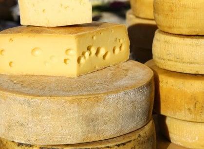 Amanti dei formaggi, gioite! Non fanno ingrassare, anzi (dice uno studio)