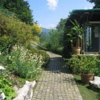 Lombardia: fotoguida agli orti botanici
