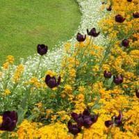 Sul Garda ma anche a Milano: la Lombardia dei giardini