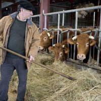Charroux, agricoltori tutti a terra. E non si fidano più dei politici