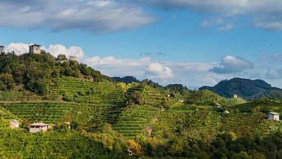 I distretti tornano a ruggire: Prosecco veneto, occhiali bellunesi, salumi di Parma, vini toscani e bufala campana battono la crisi