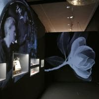 Così la medicina incontra la fisica: a Pisa la mostra Uomo Virtuale