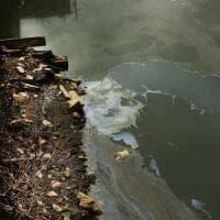 Acqua, la fabbrica dei veleni che allarma il Veneto