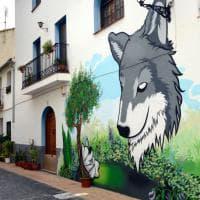 Spagna: Fanzara, il borgo riappacificato dalla street art