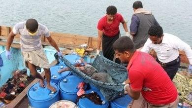 Yemen, profughi somali in fuga su una barca  massacrati sotto un bombardamento