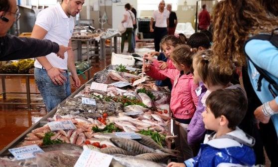 """Pescatori, cuochi e scienziati: al via la """"rete per il mare"""" di Slow Fish"""