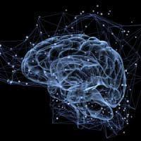 Scoperti i cento geni che regolano la memoria