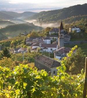 L'oro della Prosecco Valley: bollicine meglio dell'industria. Ecco i nuovi padroni del vino