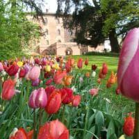 Giardini, fioriture ed eventi di primavera