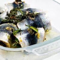 Bologna, da Francesco il pesce (povero e ben cucinato) è protagonista
