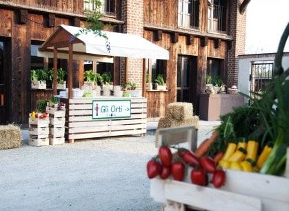 Torino: se l'orto è Korto, verdure e ortaggi diventano social (anche grazie alla tecnologia)