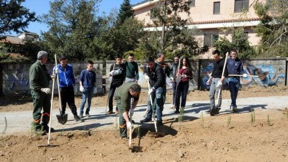 Nuoro, chi arriva tardi a lezione zappa la terra: la sanzione perfetta della scuola