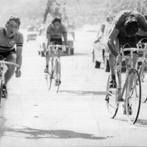 """Il Fiandre di Maertens: """"Sagan e Van Avermaet ricordano il mio 1977"""""""