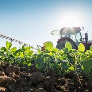 Biopesticidi, possibile soluzione per un'agricoltura più sana