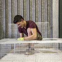 Edoardo Tresoldi, il visionario scultore under 30 che ha conquistato 'Forbes'