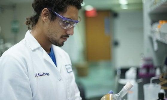 La farmacia nell'oceano: un biologo in surf a caccia di super batteri