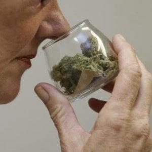 La cannabis può aiutare nella cura dei tumori?