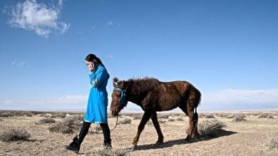 """La primavera dei pastori nomadi.  """"E' resilienza al clima che cambia"""""""