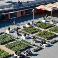 Il decalogo della Lipu per la buona gestione del verde urbano